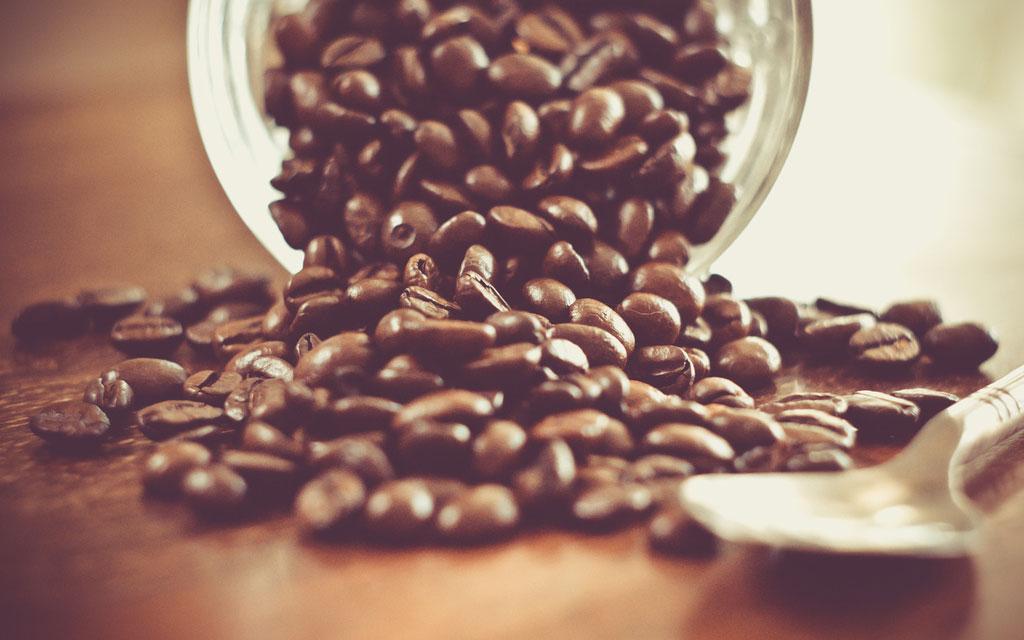 färska kaffebönor pris