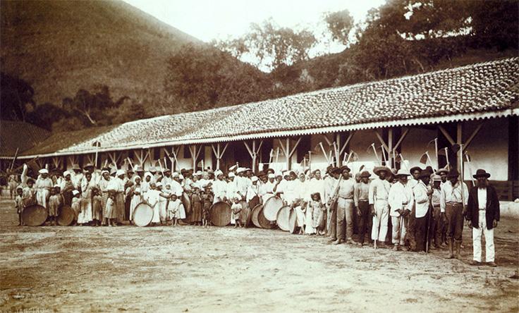 Svarta slavar på en kaffeplantage i Sydamerika år 1885.